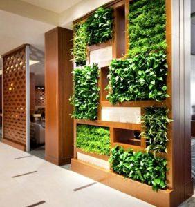 Вертикальное озеленение квартиры