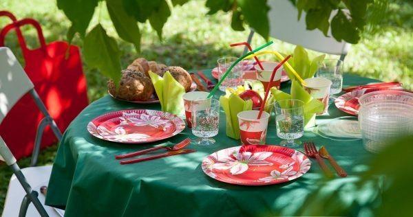 Одноразовая посуда для пикника