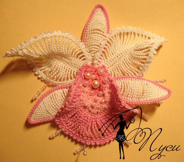 Самые интересные идеи Бабочка галстуЛистья орхидея иКак
