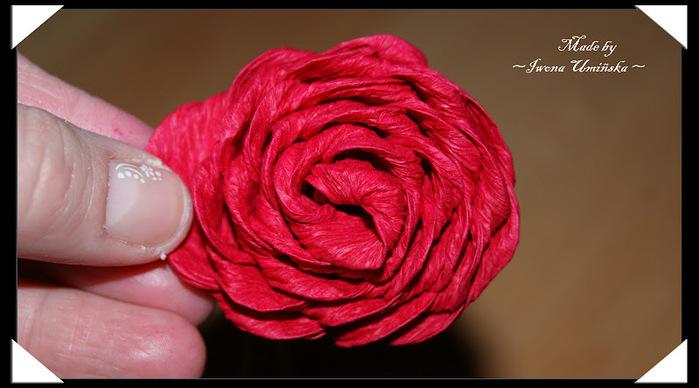 татуировка мало крученые розы из гофрированной бумаги Вам снять