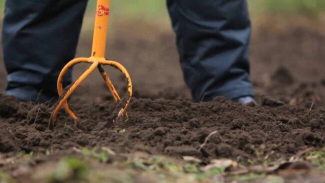 Обработка земли ручным культиватором Торнадо