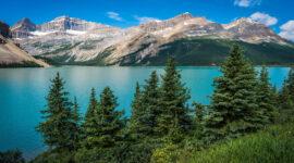 фото красивой природы лес озеро и горы